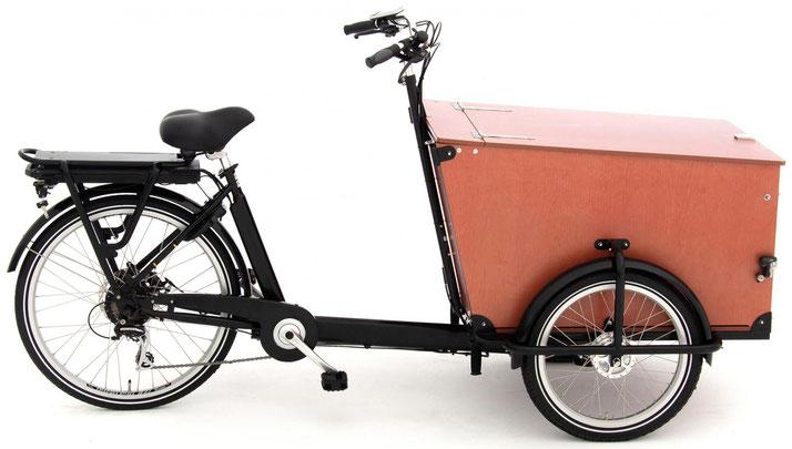 Babboe Transporter-E 2020