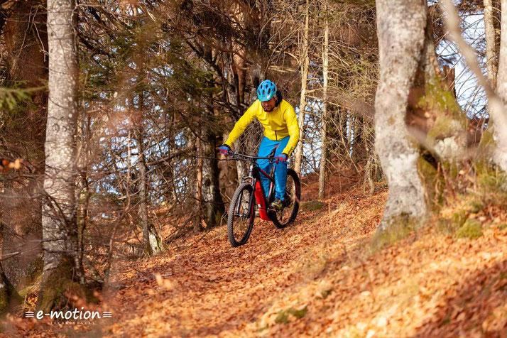 Einem Ausflug auf den Trail steht Einem mit dem Corratec X Vert Pro nichts mit Wege.