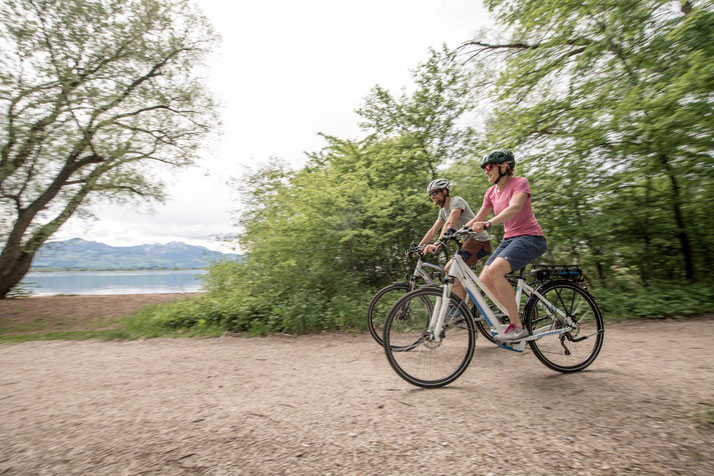 Corratec E-Power Sport 2020 Trekking e-Bikes