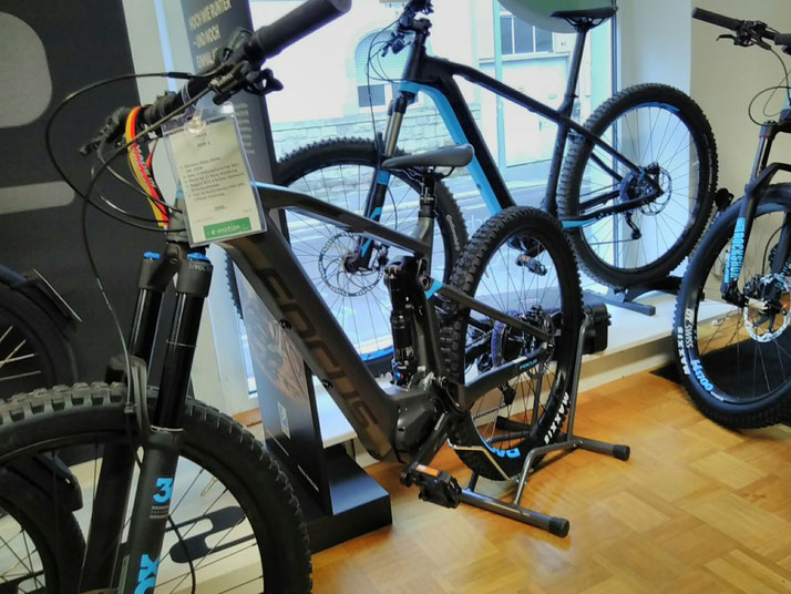 Focus e-Bikes kaufen in Worms