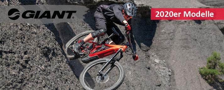 Giant e-Bikes 2020 e-Mountainbikes, City e-Bikes und Speed Pedelecs