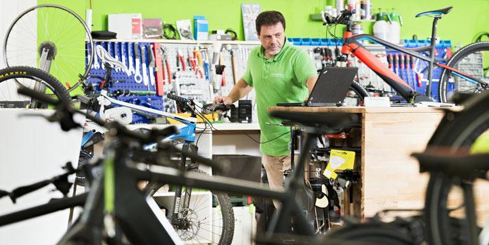 e-Bike Test & Vergleichstests