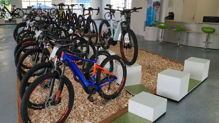 Giant e-Bikes, Pedelecs und e-Mountainbikes in der e-motion e-Bike Welt Karlsruhe