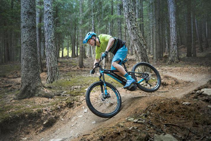 e-Mountainbikes verschiedener Marken in Ahrensburg vergleichen, kaufen oder Probe fahren