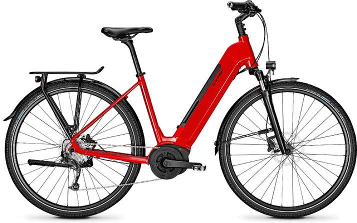 Raleigh Kent 9 Trekking e-Bike 2020