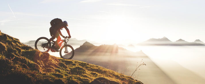 M1 e-Bikes und Pedelecs in der e-motion e-Bike Welt im Harz