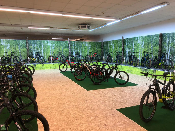 Die e-motion e-Bike Welt in Nürnberg bietet Premium e-Bikes vieler Marken an.