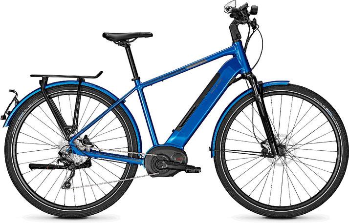 Raleigh Kent 10 S Speed-Pedelec 2020