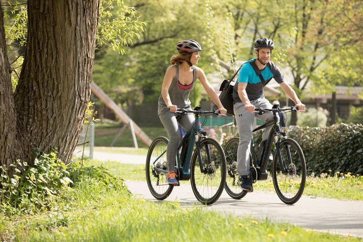 Im Shop in Nürnberg können Sie alle unterschiedlichen Ausführungen von Trekking e-Bikes kennenlernen.