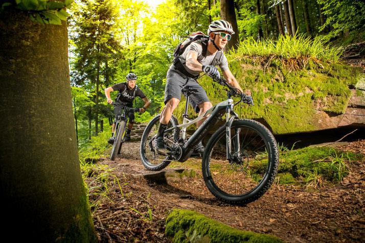 Pedelecs und S-Pedelecs finden Sie in den e-motion e-Bike Shops in ganz Deutschland.