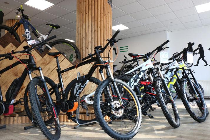 Im Shop in Herdecke können Sie sich viele verschiedene City e-Bikes ansehen
