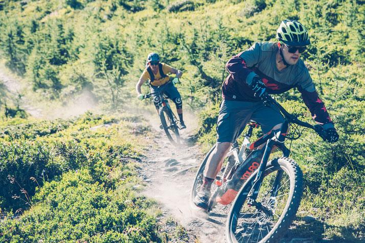 e-Mountainbikes verschiedener Marken in München West vergleichen, kaufen oder Probe fahren