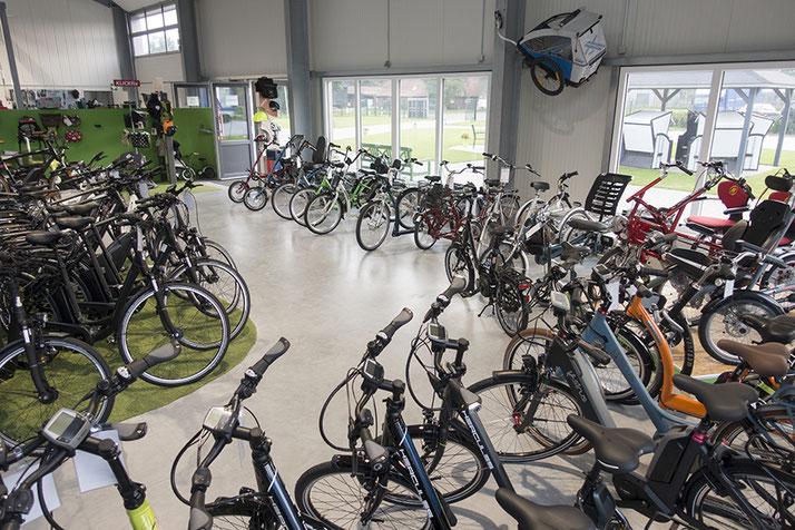 Auf großer Ladenfläche können Sie sich im Shop in Bad Zwischenahn zahlreiche e-Mountainbikes ansehen und probefahren.