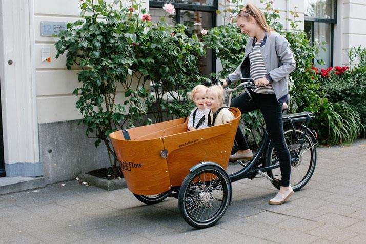Babboe Flow-E Lasten e-Bike, Lastenfahrrad mit Elektromotor, e-Cargobike 2021