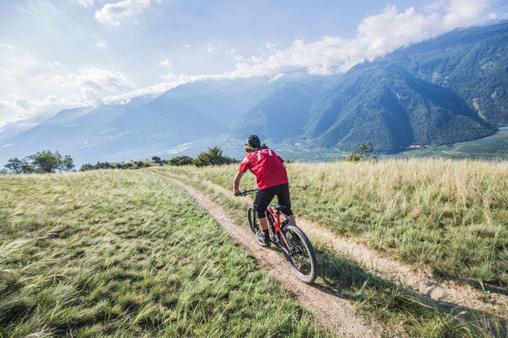 Haibike Xduro Adrventr e-Bikes 2020