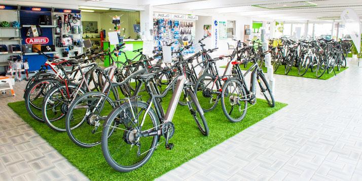 Auf großer Ladenfläche können Sie sich im Shop in Kleve zahlreiche e-Mountainbikes ansehen und probefahren.
