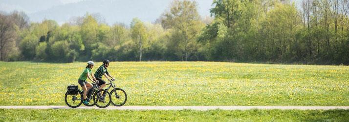 Cannondale e-Bikes und Pedelecs in der e-motion e-Bike Welt iin München Süd kaufen