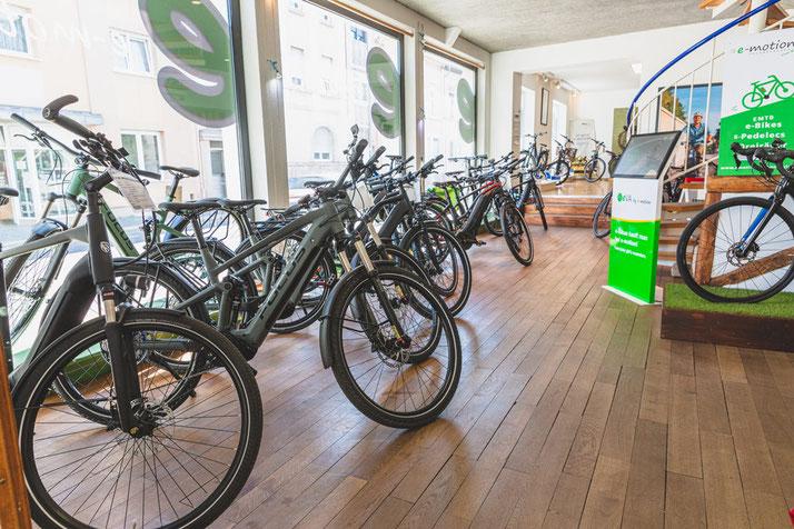 e-Bike Auswahl in der e-motion e-Bike Welt Worms