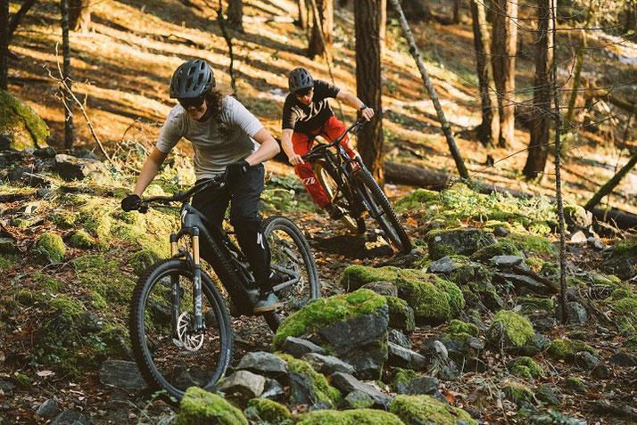 e-Mountainbikes verschiedener Marken in Wiesbaden vergleichen, kaufen oder Probe fahren