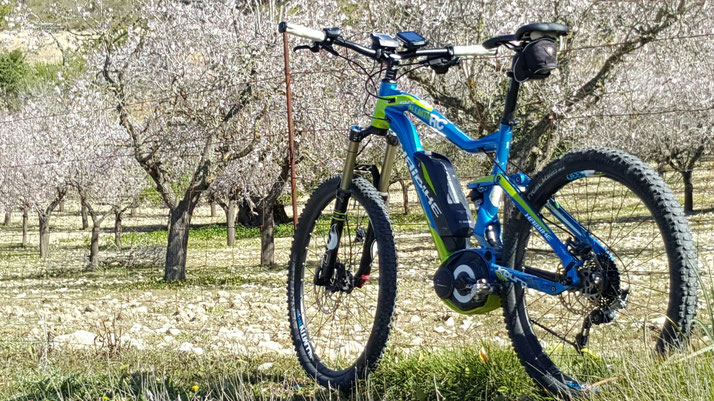 e-Bike fahren auf Mallorca
