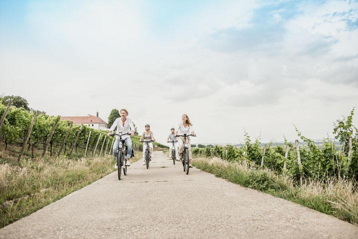 In Nürnberg können Sie Trekking e-Bikes vergleichen und Probefahren