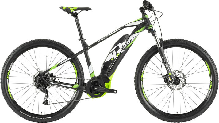 R Raymon E-Nineray 4.5 - e-Mountainbike - 2019