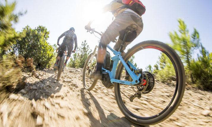 Der Bosch e-Mountainbike Modus für sportliche Herausforderungen