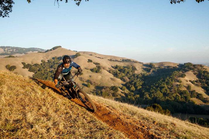 Cannondale Moterra e-Mountainbike 2019