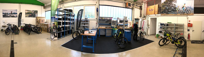 e-motion e-Bike Service und Reparatur in der e-motion e-Bike Welt Bad Hall bei Linz