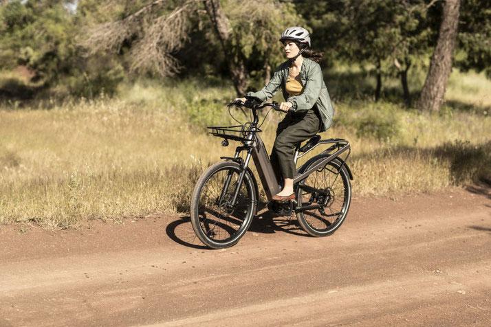 Riese & Müller Culture GT e-Bikes 2020