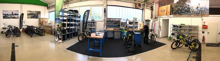 e-motion e-Bike Werkstatt in Bad Hall - Ihr Experte für Reparatur, Service und Wartung von e-Bikes!