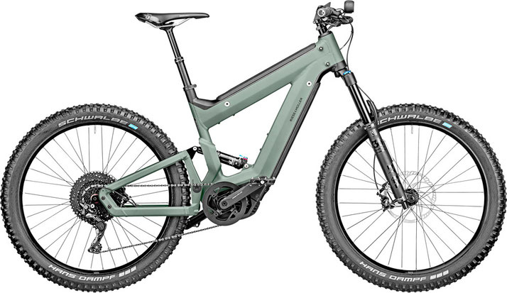Riese & Müller Delite Mountain Rohloff - 2020
