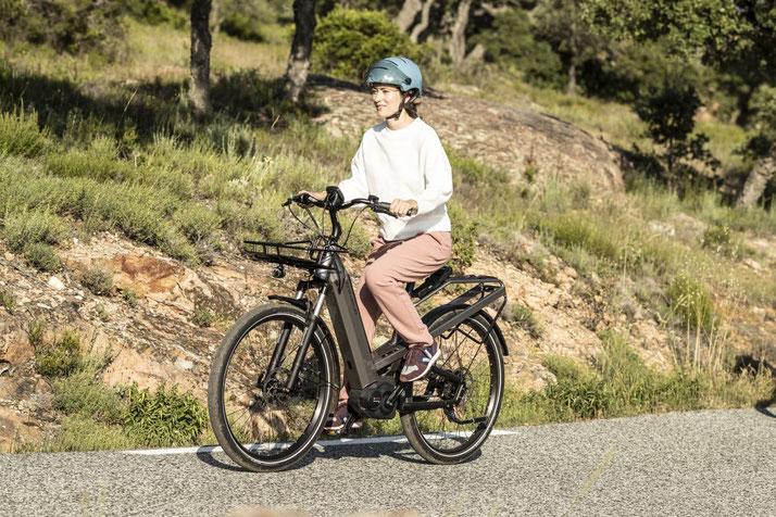 Riese & Müller - Culture GT e-Bikes 2019