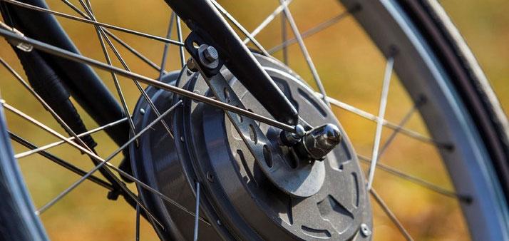 Ausflug mit einem Dreirad für Erwachsene - Dreiräder vom Experten in der Schweiz