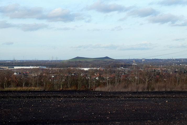 Blick von der Schurenbachhhalde auf die Mottbruchhalde Richtung Norden