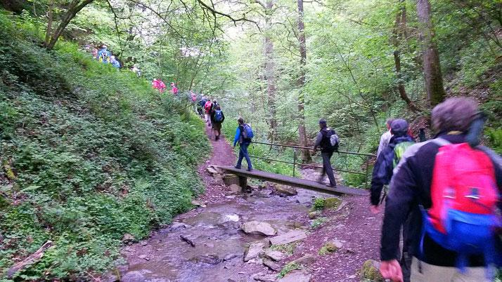 Rheingsteig Wanderung als Team Event oder Geburtstagsparty