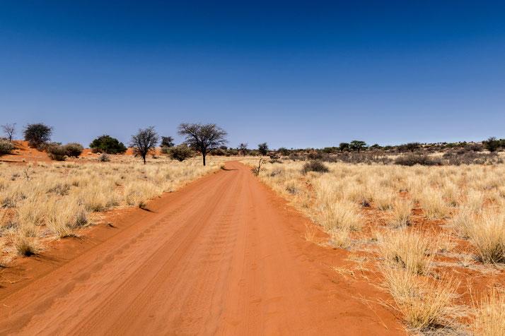Bagatelle Kalahari Game Ranch, Caprivi Car Hire, Namibia