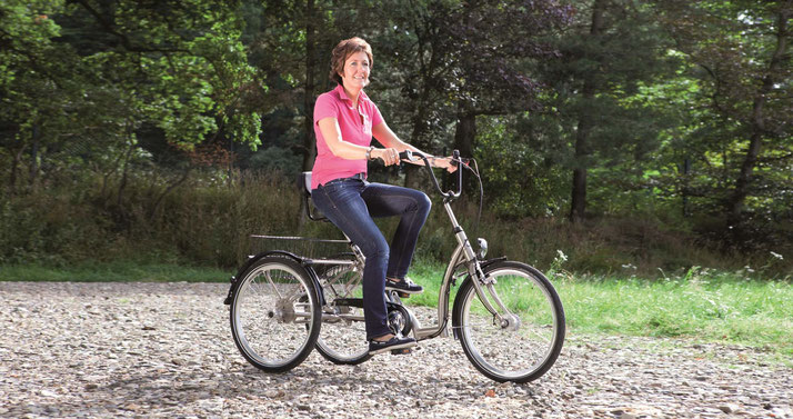 Pfau-Tec Comfort Dreirad Elektro-Dreirad im Harz
