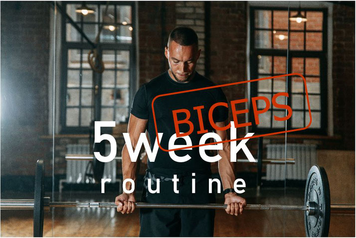 5-week workout plan biceps muscle mass