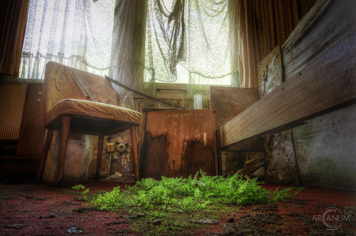 Decay in an abandoned recreation home...