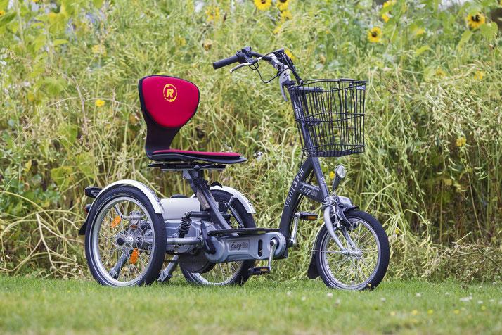 Van Raam EasyGo Scooter Dreirad