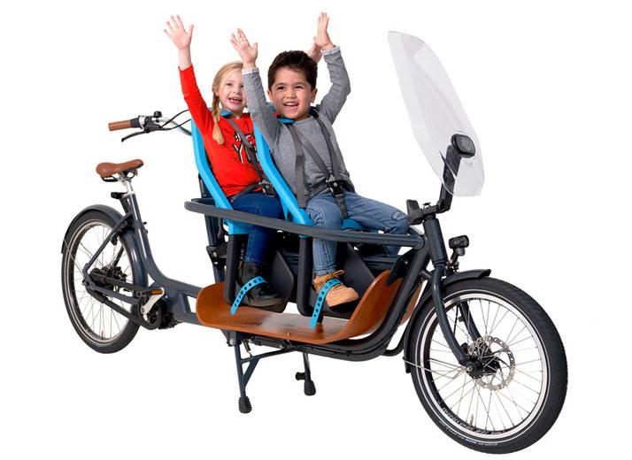 Babboe Slim Mountain Lasten e-Bike, Lastenfahrrad mit Elektromotor, e-Cargobike 2019