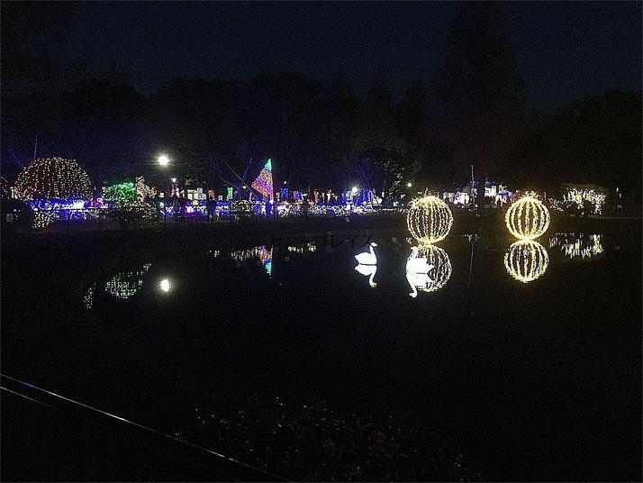 足立区,元渕江公園,光の祭典,2018