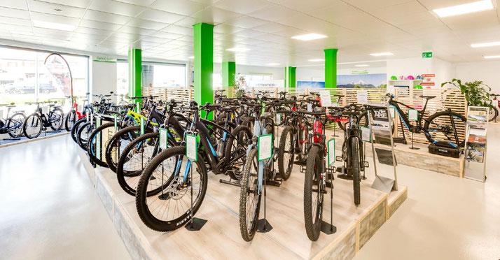 e-Mountainbike Markenvielfalt und grosse Auswahl in der e-motion e-Bike Welt Aarau-Ost