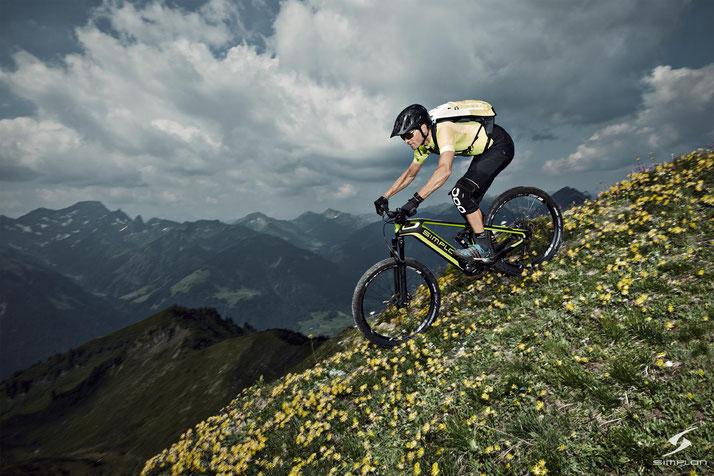 e-Mountainbikes 2020