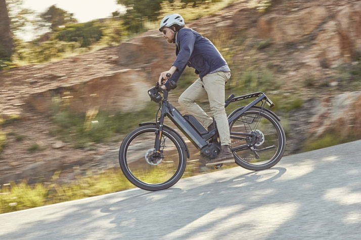 Riese & Müller - Homage City e-Bikes 2019