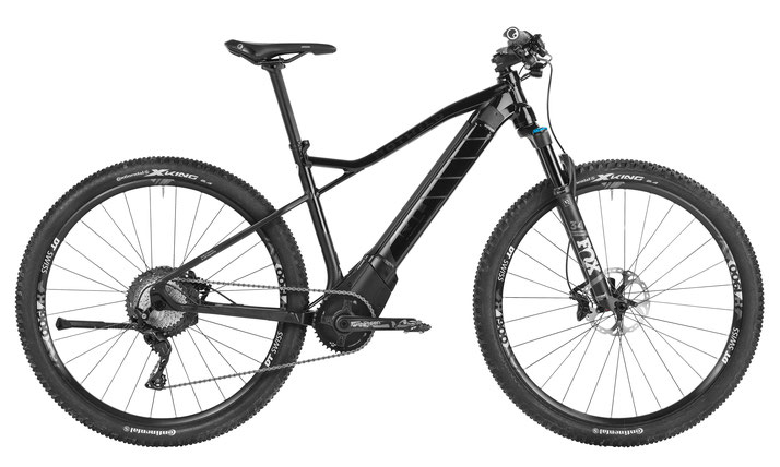 Rotwild R.T+ Core Trekking e-Bike 2019