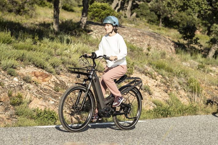 Riese & Müller Culture GT Trekking e-Bike 2020