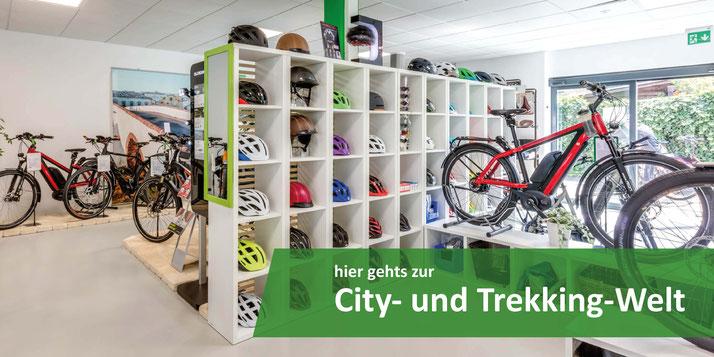 e-Bike City Welt Ausstellung in Aarau-Ost
