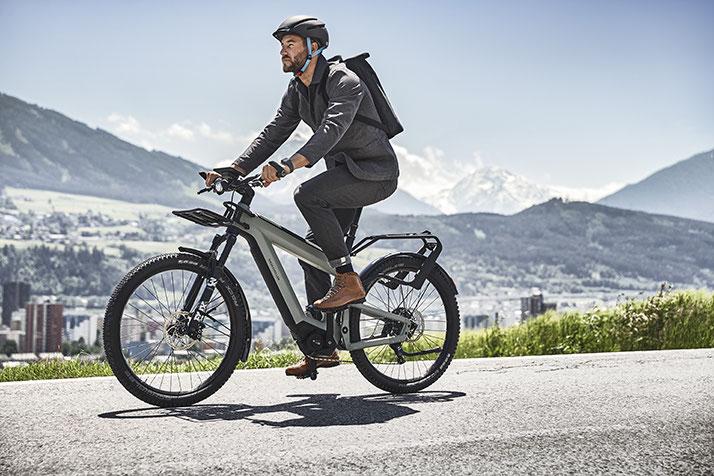 e-Bike Typen 2016